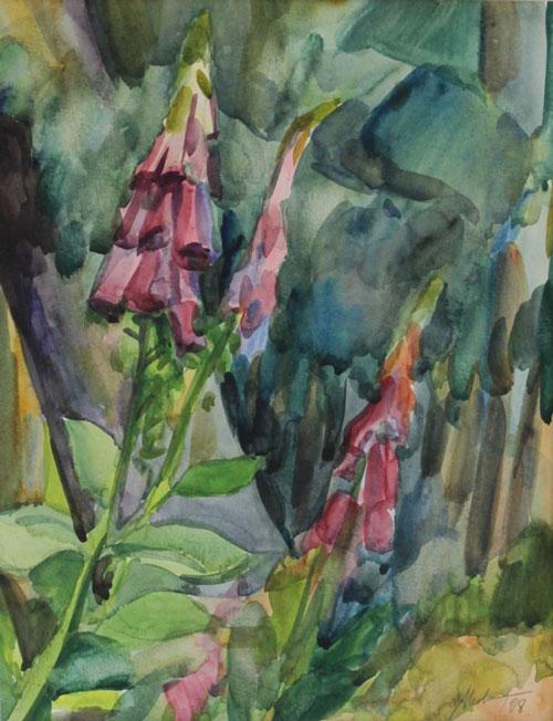 Mednikova - Fingerhut, 2008, Aquarell auf Papier, 30,5 x 23 cm